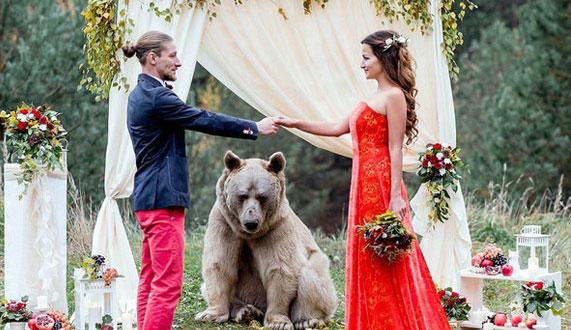 俄罗斯恋人婚礼邀请了一头真熊作婚礼的证婚人